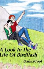 A Look Into The Life Of Birdflash by OhCaptainMyCaptian
