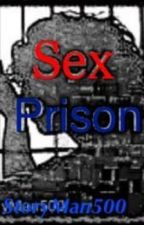Sex Prison by StoryMan500