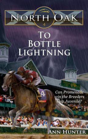 North Oak, Book 4 - TO BOTTLE LIGHTNING by AnnHunter82