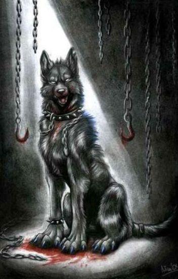 Niebezpieczna wilczyca