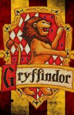 Gryffindor Common Room  by PottermoreChat