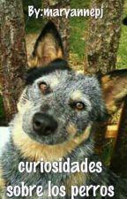 Curiosodades sobre los perros by maryannepj