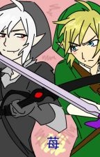 !Rivalry!Link and Dark Link x Reader by infiredarmy