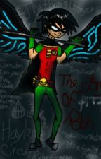 The past of a robin (a teen Titan and Danny phantom crossover fanfic) by wolf_wing_shadow