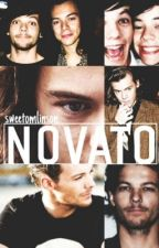 O novato (Larry Stylinson) by sweetomlinson