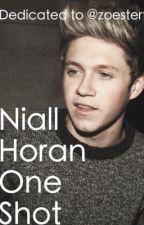 Niall Horan One Shot by sexycarrotclub