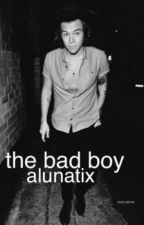 The bad boy h.s by alunatix