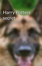 Harry Potters secret by djjcbibi