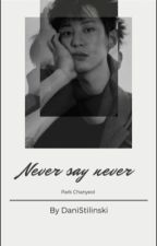 Never Say Never by DaniStilinski
