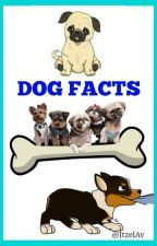 25Dog Facts by ItzelAV