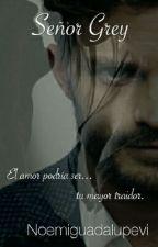 Señor Grey by noemiguadalupevi