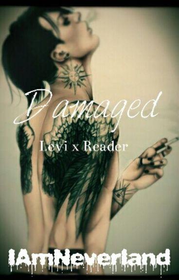 Damaged [Levi x Reader]