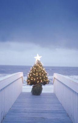Đọc truyện (Truyện ngắn-full) Last christmas