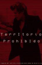 Territorio prohibido |Harry Styles| by cemetery02