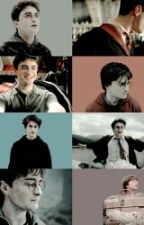 This Diary Is The Property Of: Harry Potter by TheGxldenTrio