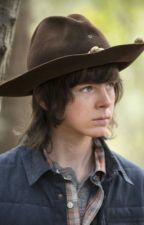 A Hope Story. (A Carl Grimes Gay Fanfiction) by babyshambles24
