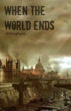 WHEN THE WORLD ENDS by WishingPanda