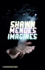 Shawn Mendes Imagines by mendesdefined