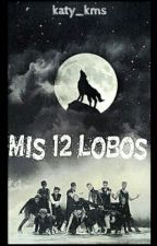 Mis 12 lobos by Katy-kms