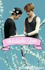 Indubitable Love [HunHan FF] by realheartss