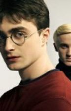 You're My..... What? [A Harry Potter Fan Fic] ON HOLD by this_ginger_lovesyou