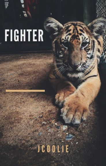 Fighter by JCoolie