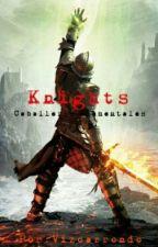 Knights: caballeros elementales  by Vizcarrondo