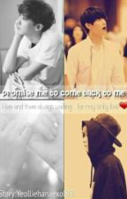 Promise me to come back to me by yeolliehanaexol88