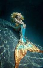 Aqua by lalera