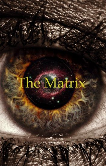 The Matrix ( A Doctor Who Fanfiction)
