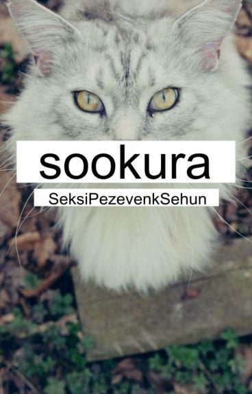 sookura // kaisoo √
