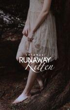 Runaway Kitten  by KatxMae