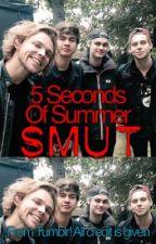 5SOS Smut *not mine* by punkrocklashtonn