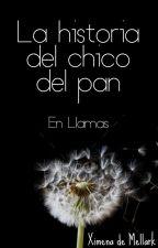 La Historia de el Chico del Pan: En Llamas by XimenadeMellark