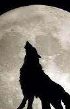 لعنة الذئب by kim_misoo