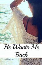 He Wants Me Back by viDenne