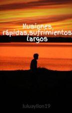 Ilusiones rápidas,sufrimientos largos by luluayllon19