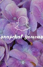 snapchat famous by addictsolzanski