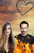 Fire Meet Gasoline / A.L Fanfic [On Hold] by awildchloe