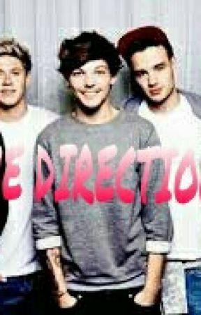 Das One Direction Buch by Rubinsplitter