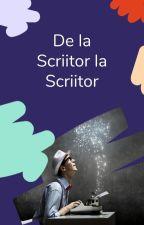De la scriitor la scriitor by AmbassadorsRo