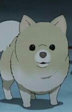 Hetalia x Dog Reader - The Bath!! - Wattpad