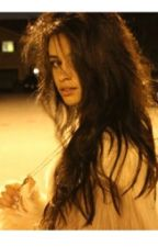 12 Contos de Camila by blocodenotas