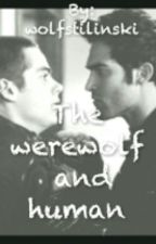 The werewolf and human (Logo Será Excluída) by wolfstilinski