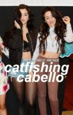 catfishing cabello ↬ camren by desiregui