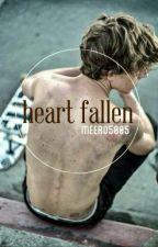 Heart fallen by meero5005