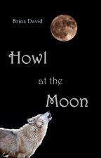 Howl at the Moon by BrinaDavid