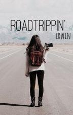 roadtrippin'; irwin by cutehood