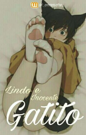 Lindo e Inocente Gatito