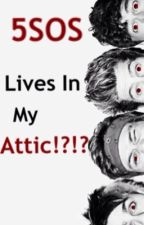 5SOS Lives In My Attic!?!? (Vampire fanfic) by Niall_ate_my_lunch